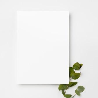 緑の葉の上から見た白いフレーム