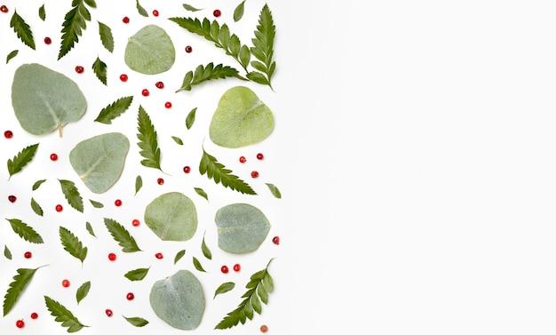 Вид сверху коллекция зеленых листьев с копией пространства