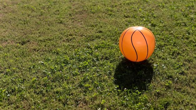 裏庭のボール