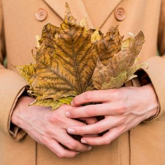 秋の紅葉を保持している女性