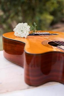 上の花と屋外のギター