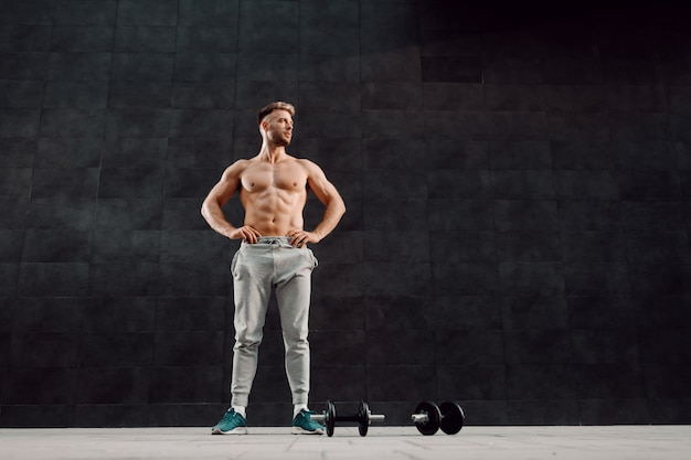 暗い壁の前で腰に手で立っていると離れているハンサムな上半身裸の筋肉白人男性の完全な長さ。彼の足元にはダンベルがあります。