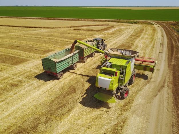 収穫機は小麦とトレーラーをロードします。機械で麦畑に取り組んでいる農家の空中ショット。