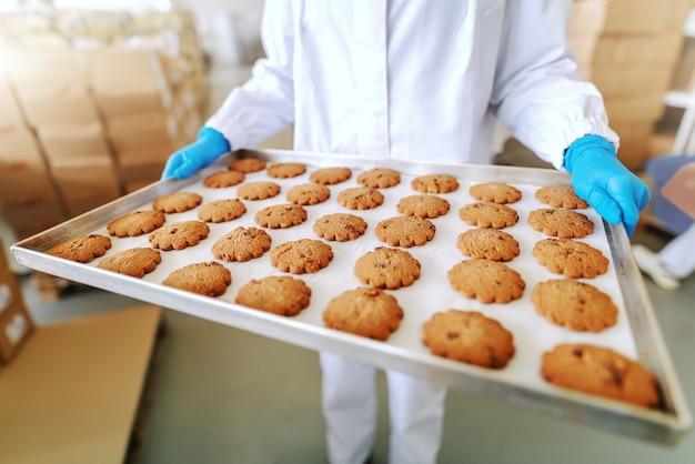 白人の従業員が無菌の制服を着ており、眼鏡が立っている状態で、クッキー付きのトレイを保持しています。食品工場のインテリア。