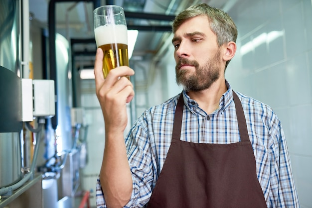 Проверка качества свежего пива
