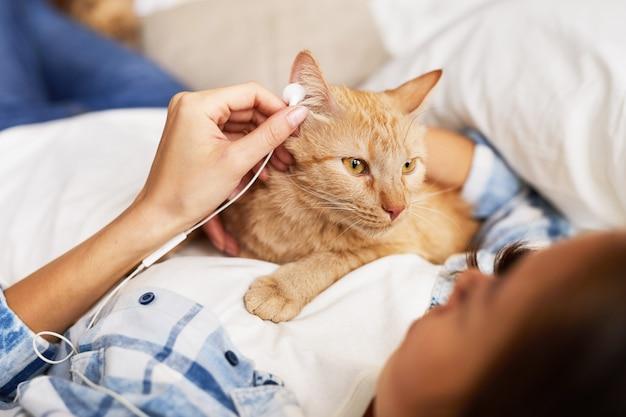 Кошка слушает музыку
