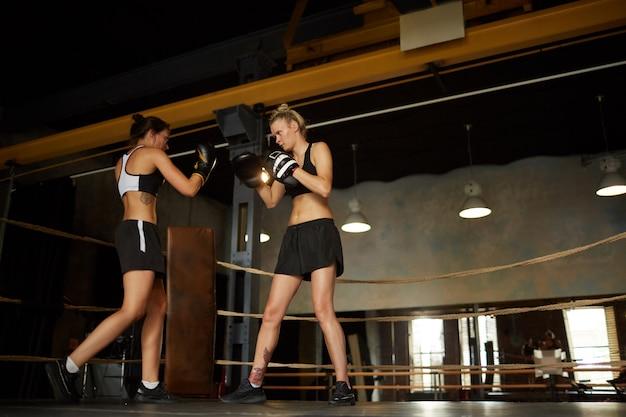 戦う女性ボクサー