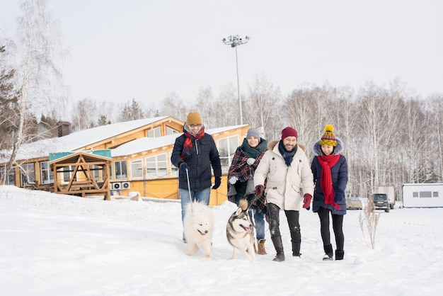 Группа людей, гуляющих с собаками