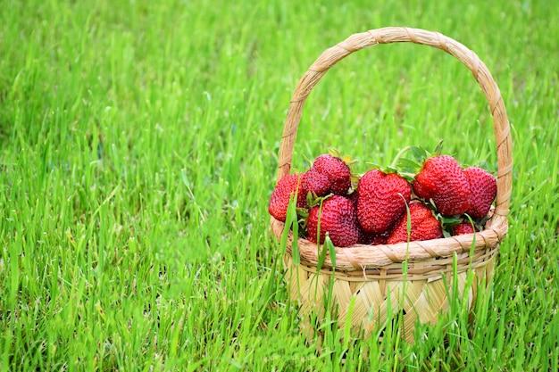 背景として緑の草の枝編み細工品バスケットで新鮮な熟したイチゴ