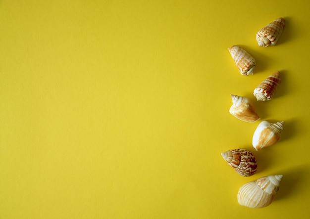 Летний фон с ракушками на желтом фоне в стиле минимализма. концепция лета, путешествий, отпусков. вид сверху, копия пространства.