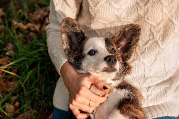 秋の色で彼女の犬を持つ若い女性