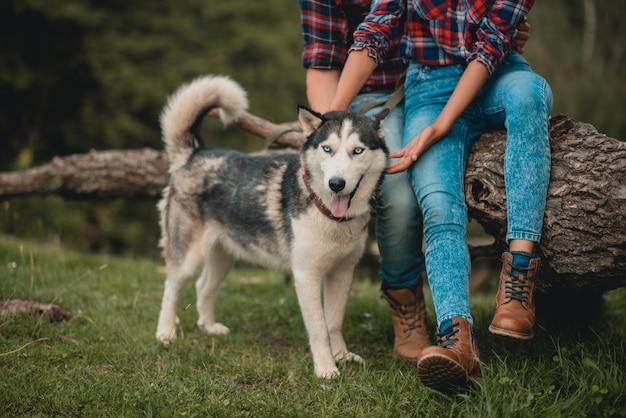 Стильная пара ног, крупным планом собака хриплым языком