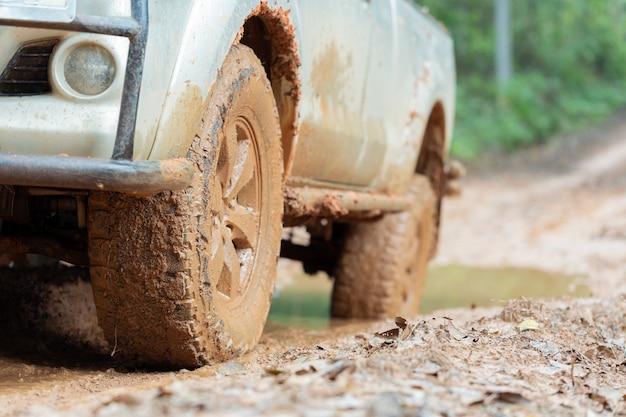 森の中で倒れた木の幹と泥の道に乗る車のタイヤ。