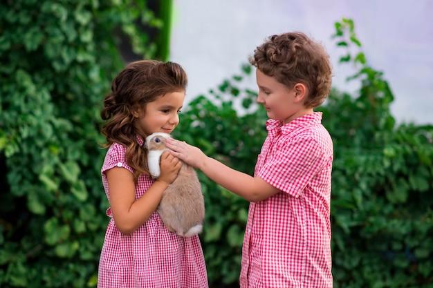 女の子と男の子のかわいいウサギ、屋外撮影を保持