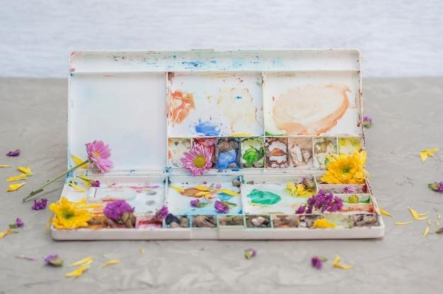パレットの水彩絵の具箱と空のツートンカラーの花びら