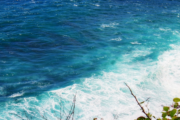 白い海の泡