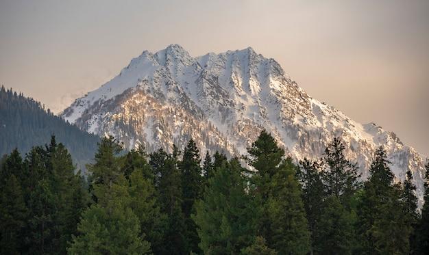 Изображение снежной горы в пахалгаме, кашмир
