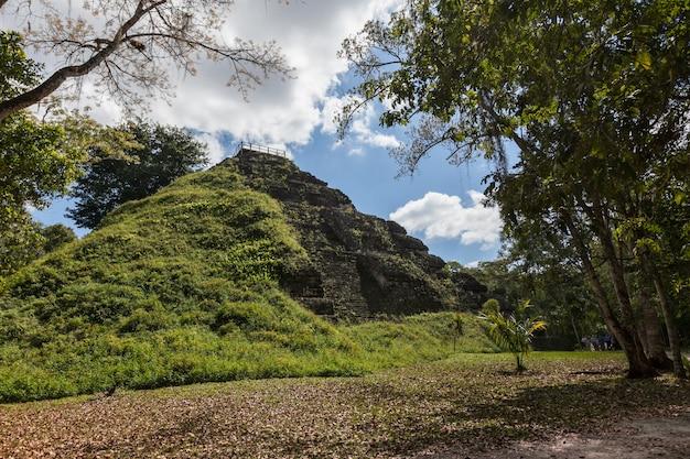 ティカル国立公園の緑の熱帯雨林のマヤ寺院のピラミッドの考古学的発掘