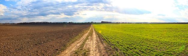 緑の牧草地と土壌地面を隔てる畑の真ん中の小道