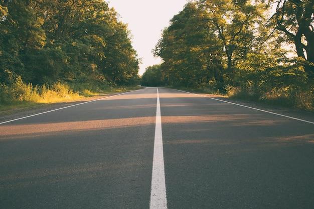 Пустая асфальтовая дорога в лесу вечером