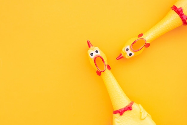 オレンジ色の背景にゴム製の鶏のおもちゃを叫んでください。