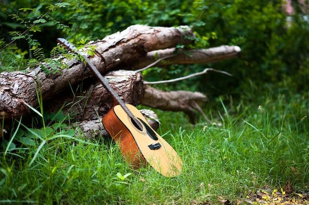 森のギター森にギターを持っていこう。