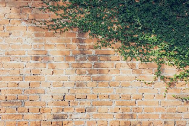 壁はレンガでできていて、それから白で塗られます