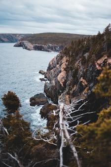 日中の水域近くの茶色と緑の岩の形成