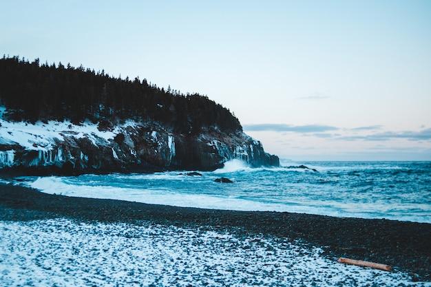 昼間に海の近くの茶色の岩の形成に緑の木々