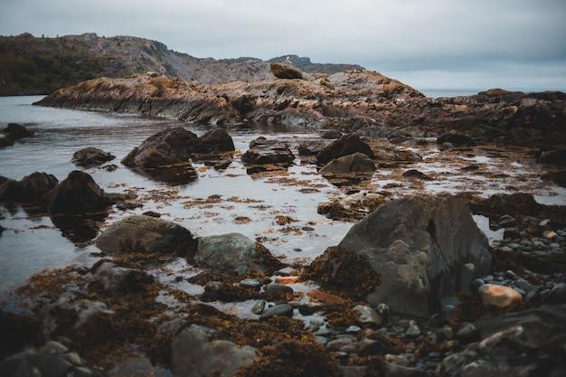 日中の水域近くの岩の形成