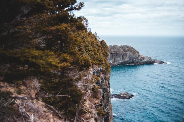中に青と白の曇り空の下で青い海の横にある茶色のロッキーマウンテンの緑の木々