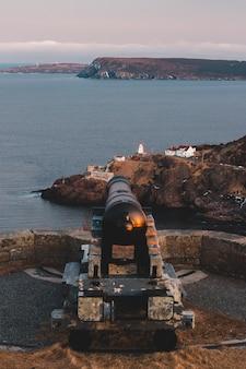Черно-коричневая пушка на коричневой скале возле водоема в дневное время