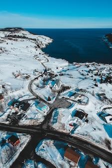 日中の水域近くの雪に覆われたフィールド