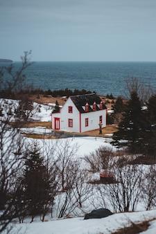 日中の水域の近くの白と赤の家