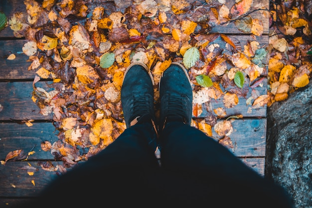 乾燥した葉の上に立っている人