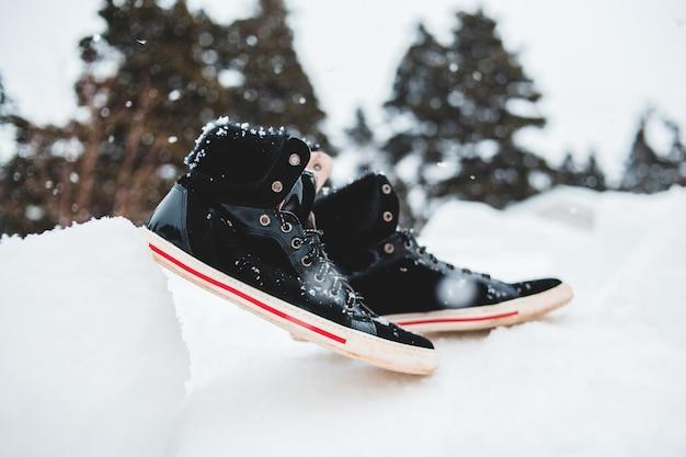雪に覆われた地面に黒赤と白
