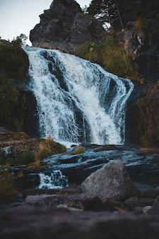 日中の森の景色の間の滝