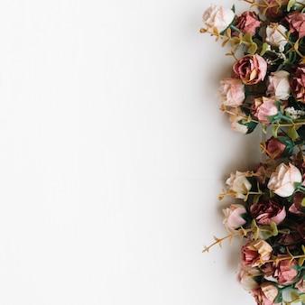白い背景の上に花