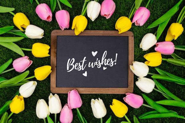 Редактируемый шаблон приветствия с тюльпанами