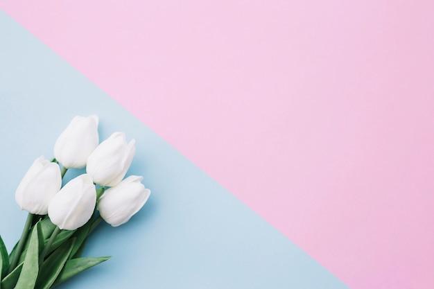 青とピンクの背景にかなりのチューリップの花束の右側にスペース