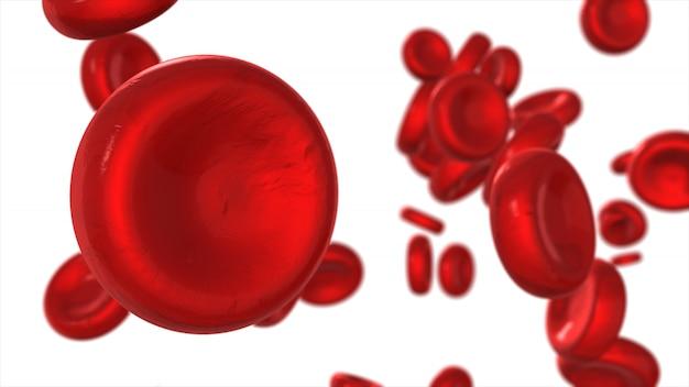 Красные кровяные клетки изолированы