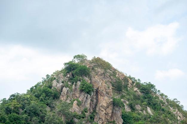 山頂はタイの小さな木です。