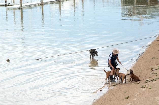 男性は水中で遊ぶ犬を歩いている。