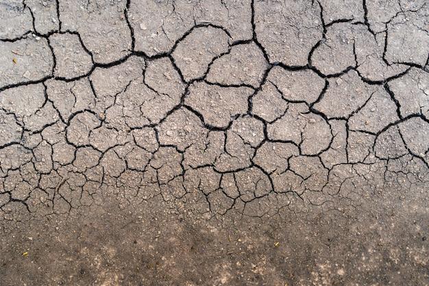 雨上がりの乾いた土壌は、長くはありません。トップビュー干ばつ。