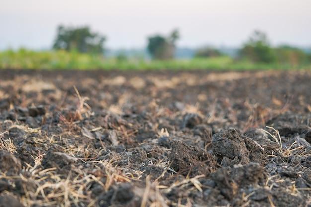 農民が作物栽培のために準備した土壌。