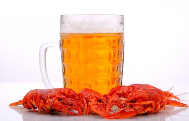 白い背景に甲殻類のビールジョッキ