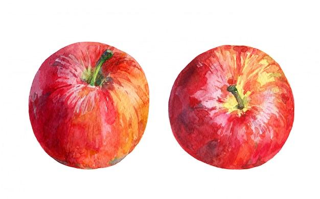 白い背景に分離されたカラフルな赤いリンゴの水彩セット