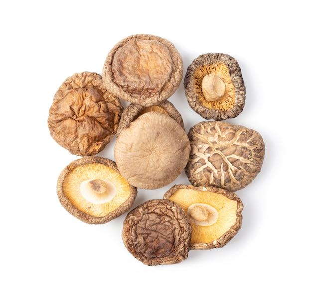 Высушенные грибы шиитаке на белой предпосылке. вид сверху