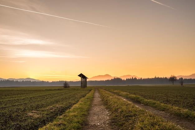 農地の国の日の出
