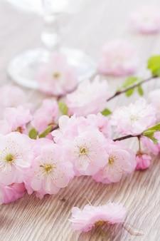 Розовые вишневые цветы